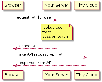 TinyMCE | JWT authentication setup